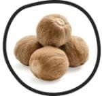 MoHA! Gusto Nutmeg Mill - 4