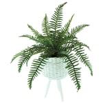 Fern Plant in White Basket - 1