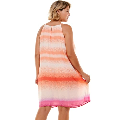 Ombre Stripe  A Line Dress - Plus - Back