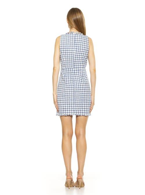 Klara Tweed Dress - Back
