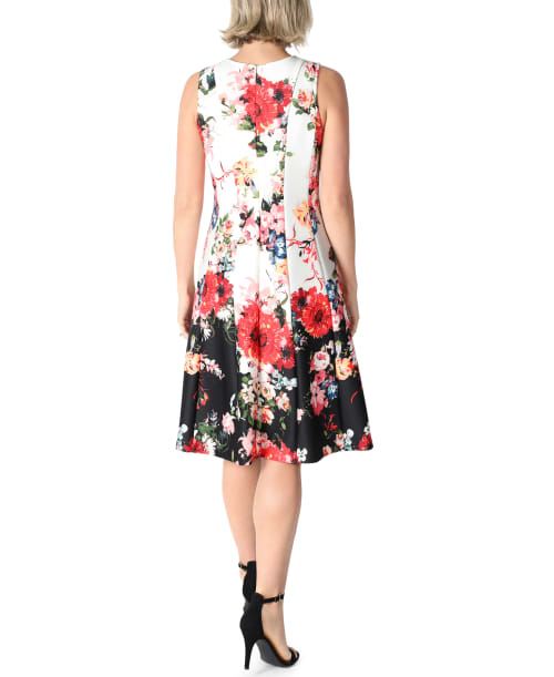 DR Sleeveless Fit And Flare Dress - Back