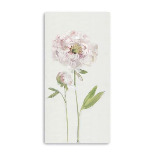 Single Stem Peony I Canvas Giclee