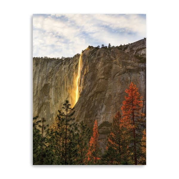 The Lost Fire Canvas Giclee