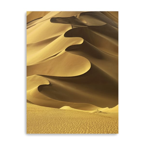 In The Dunes 2 Canvas Giclee