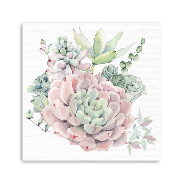 Succulents Southwest Watercolor Floral Canvas Giclee