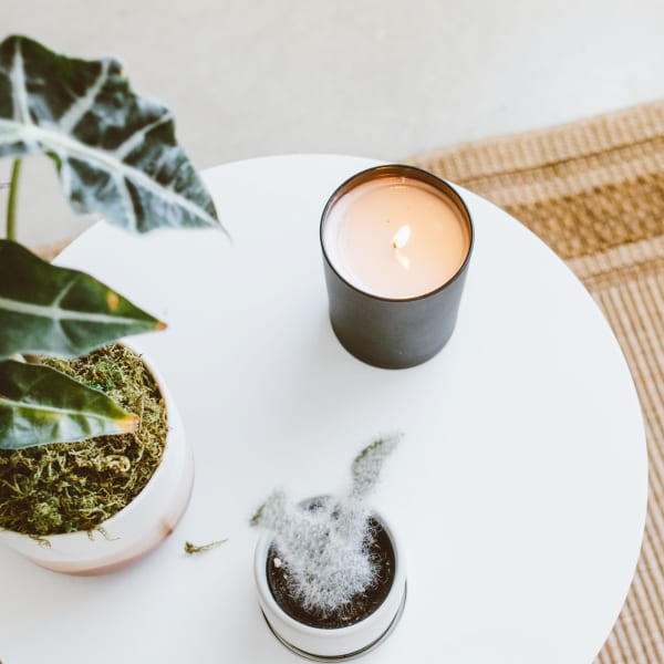Calyan Wax Co Aspen/Fog Soy Wax Candle Black Tumbler
