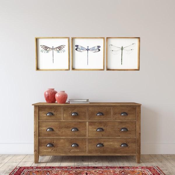 Dragonflies Set of 3 Wood Framed Animal Art Print, 20 in. x 20 in. each
