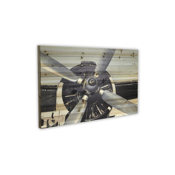 Plane Close Up Print on Planked Wood Wall Art