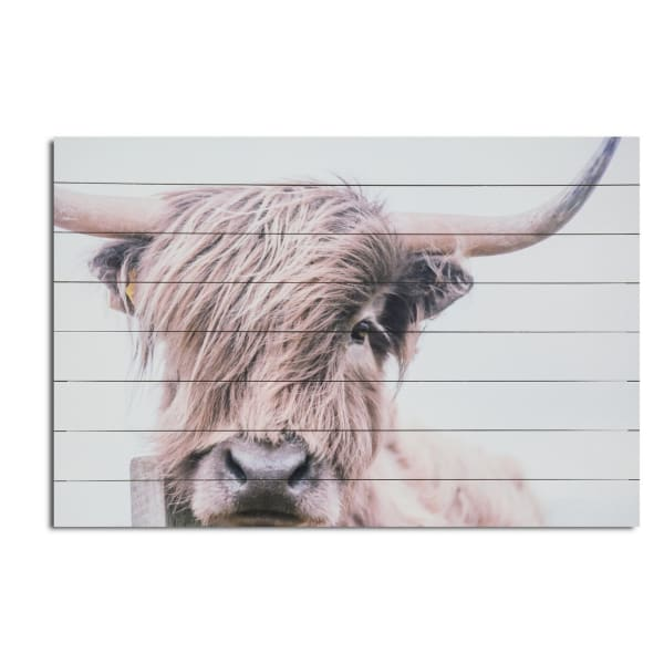 Highland Cow Planked Wood Animal Art Print