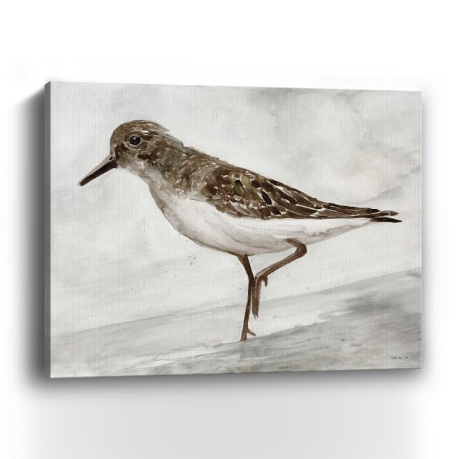 Sanibel Piper 3 Canvas Giclee