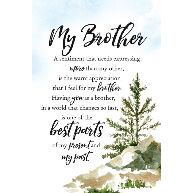My Brother Woodland Grace Series 6