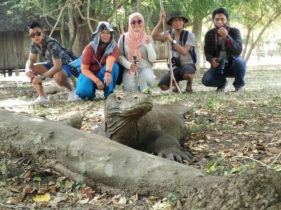 Komodo in Rinca