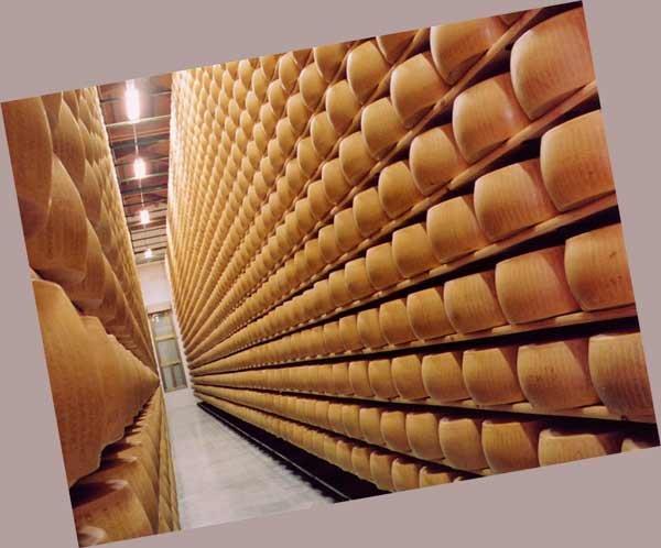 Как открыть производство сыра