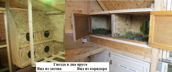 Гнезда с дверками в задней части