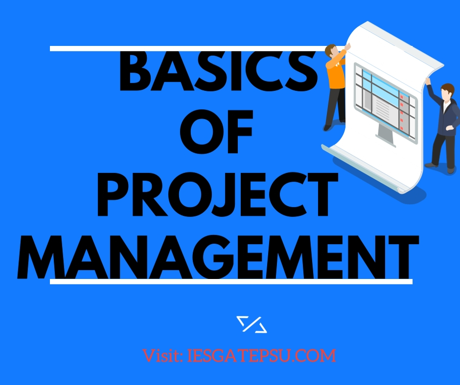 Basics Of Project Management For IES