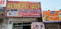 Kevin Pet Shop