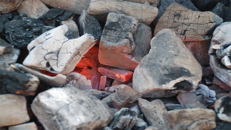 Бизнес изготовление древесного угля