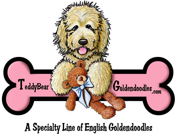 Celebrities with goldendoodles