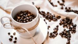 Как организовать бизнес на кофейных автоматах