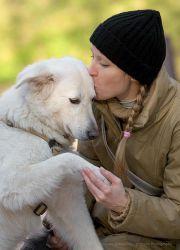 Годы жизни собаки и человека