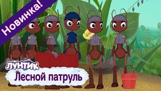 Реальная жизнь рублевских жен
