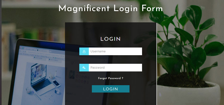 Magnificent Login Form