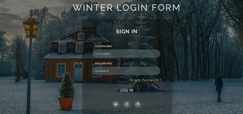 Winter Login Form