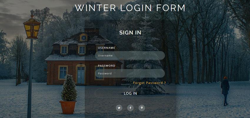 Winter Login Form
