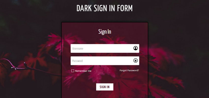 Dark Sign In Form