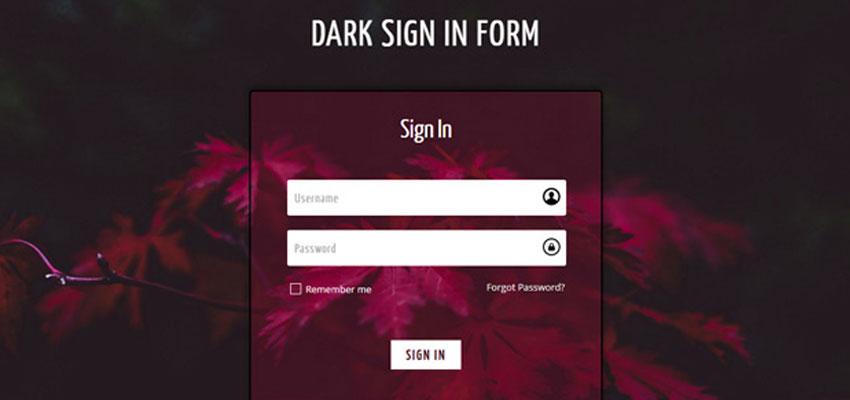 Dark Sign In Form