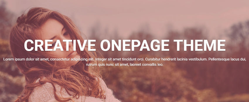 OnePage