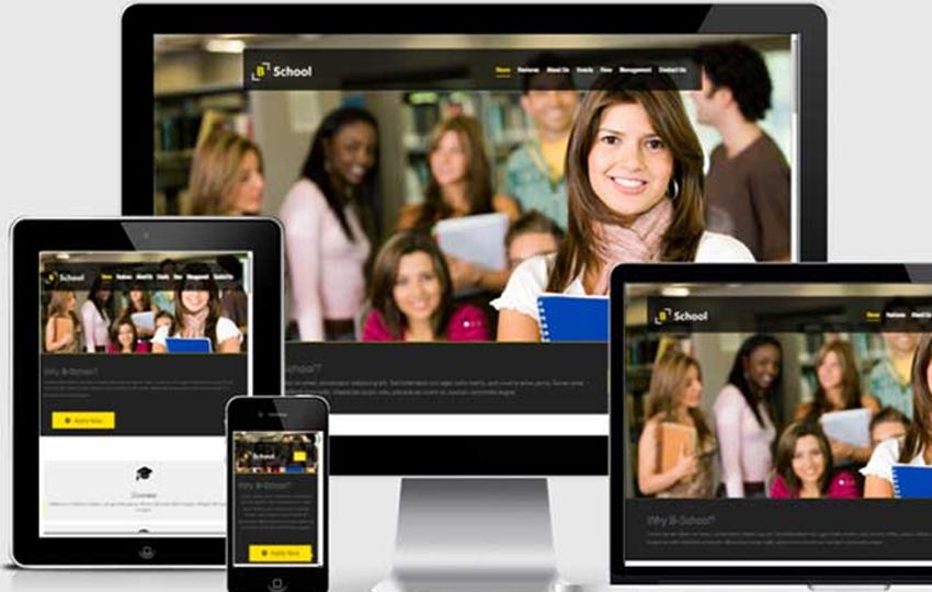 B-School Educational Website Template