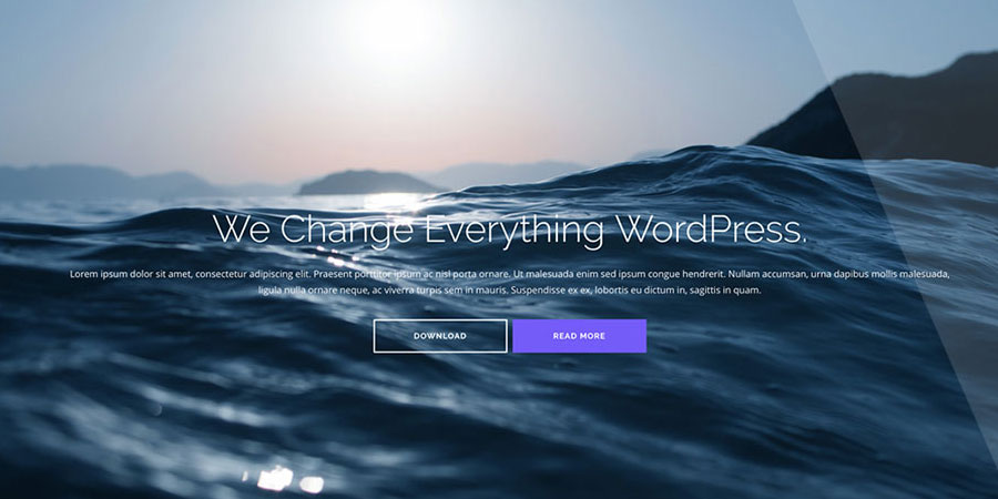 Shapely – One Page WordPress Theme
