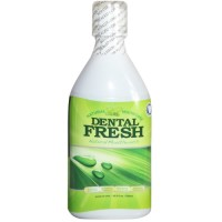 Dental Fresh, Natural Mouth Care - 16.9 oz (500 ml)