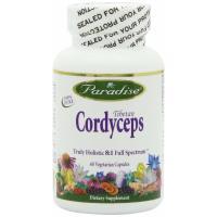 Paradise Herbs, Tibetan Cordyceps - 60 Vegetarian Capsules