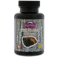 Dragon Herbs, Wild Siberian Chaga, 500 mg - 100 Capsules
