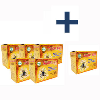 Tawon Liar, 100% Natural Herbs with Extract of Wild Bee Honey - 40 Capsules (5 Boxes + 1 Box Free~!)