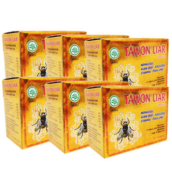 Tawon Liar, 100% Natural Herbs with Extract of Wild Bee Honey - 40 Capsules (6 Boxes)