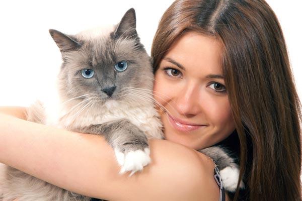 Как целуются кошки с людьми