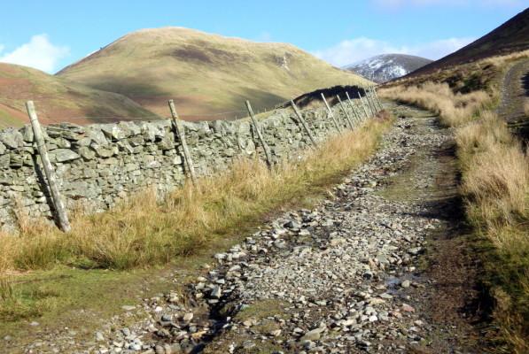 wald path
