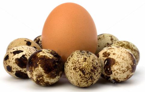 Одно куриное яйцо это сколько перепелиных