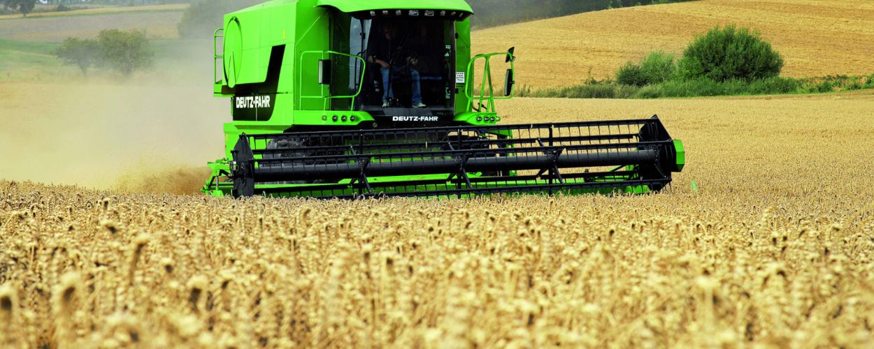 Бизнес план фермерского хозяйства бесплатно скачать