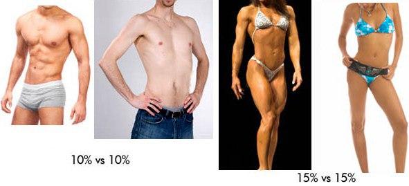 Какой процент жира в организме норма