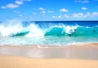 Северный гоа море или океан