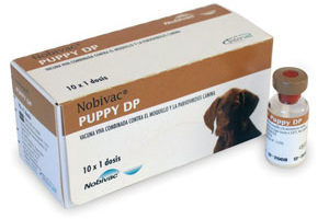 вакцина «Нобивак Puppy DP»