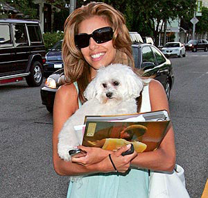 Celebrities and their animals