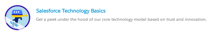Salesforce Technology Basics