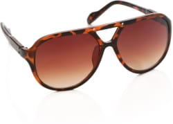 Louis Philippe Aviator Sunglasses (Brown)