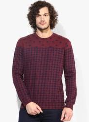 Maroon Printed Sweatshirt