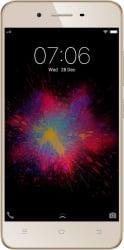 VIVO Y53 (Crown Gold, 16 GB)  (2 GB RAM)